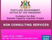 non-consultanting-services (1)